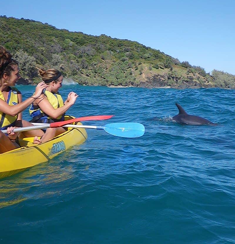 kayak tours noosa
