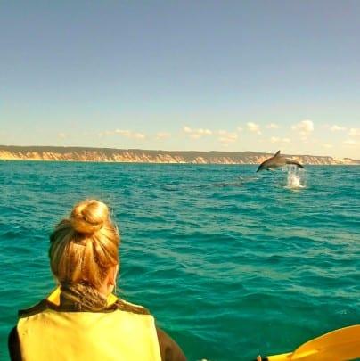 noosa kayak tours